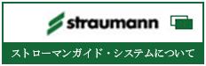 ストローマンガイド・システム
